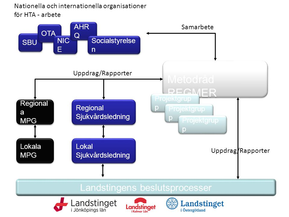 Regionalt Metodråd REGMER Landstingens beslutsprocesser