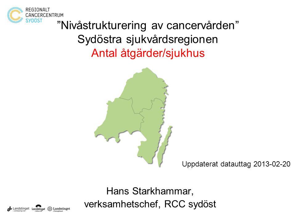 verksamhetschef, RCC sydöst