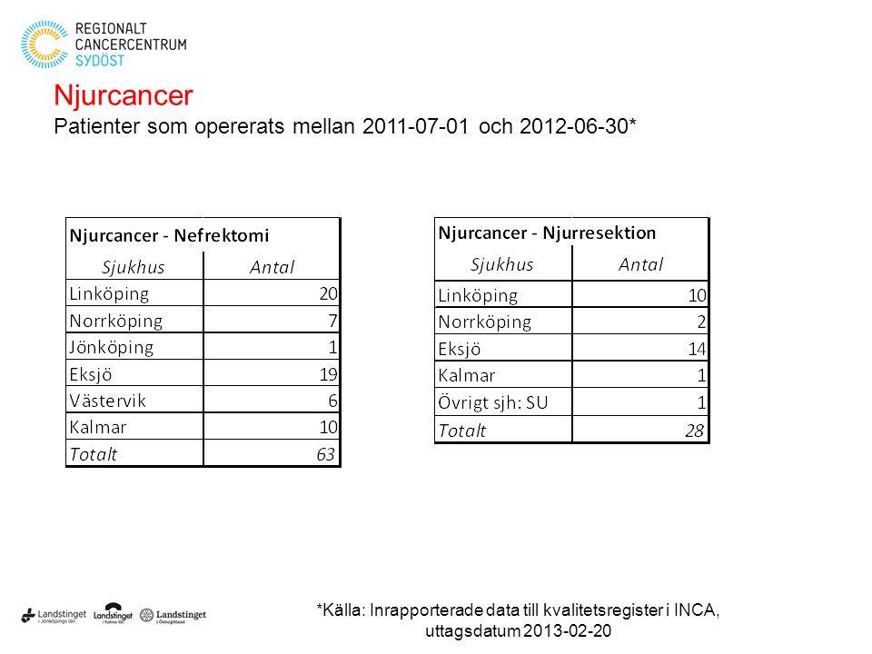 Njurcancer Patienter som opererats mellan 2011-07-01 och 2012-06-30*
