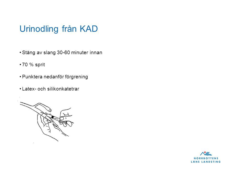 Urinodling från KAD Stäng av slang 30-60 minuter innan 70 % sprit