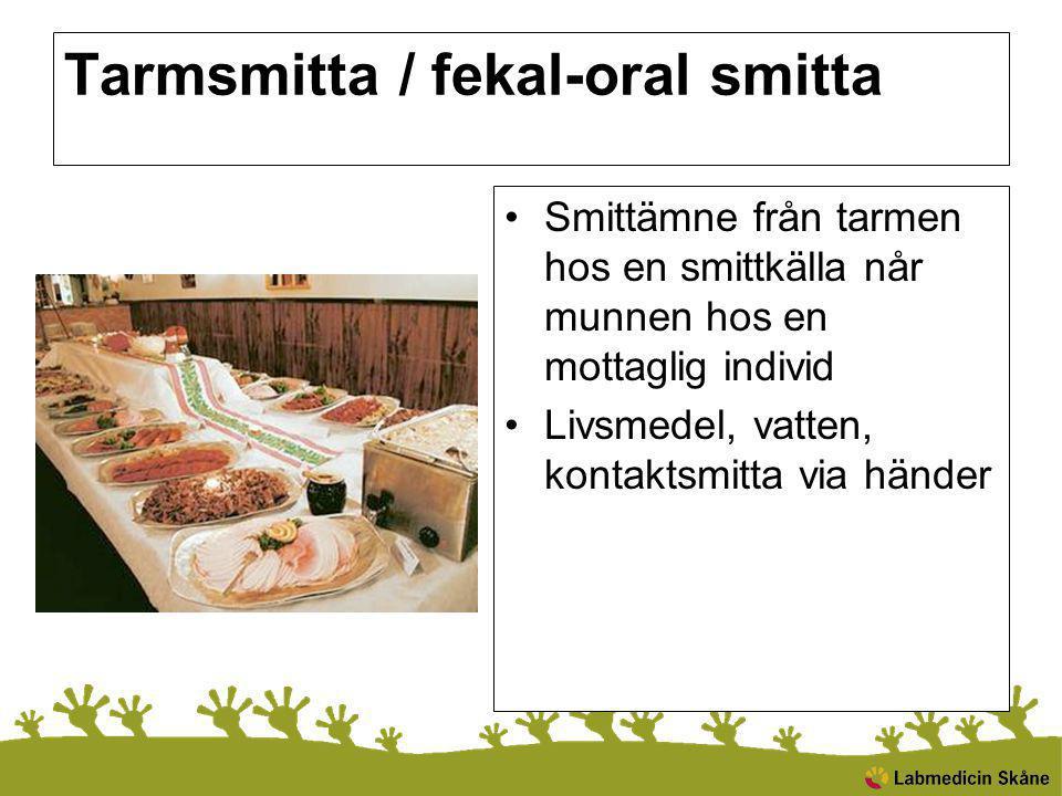 Tarmsmitta / fekal-oral smitta