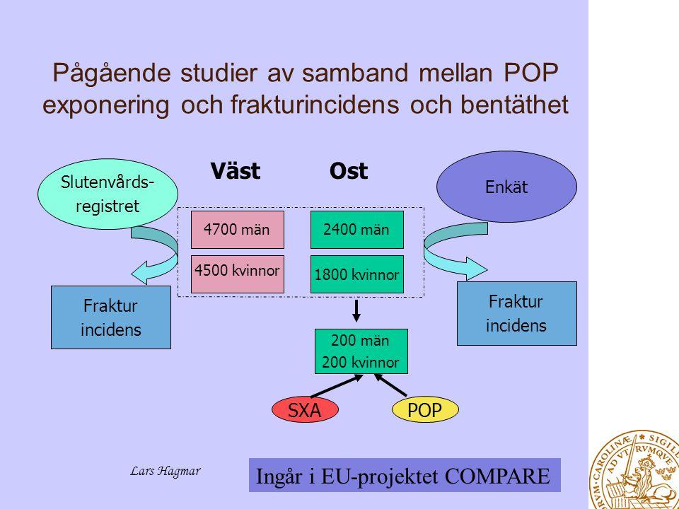 Pågående studier av samband mellan POP exponering och frakturincidens och bentäthet