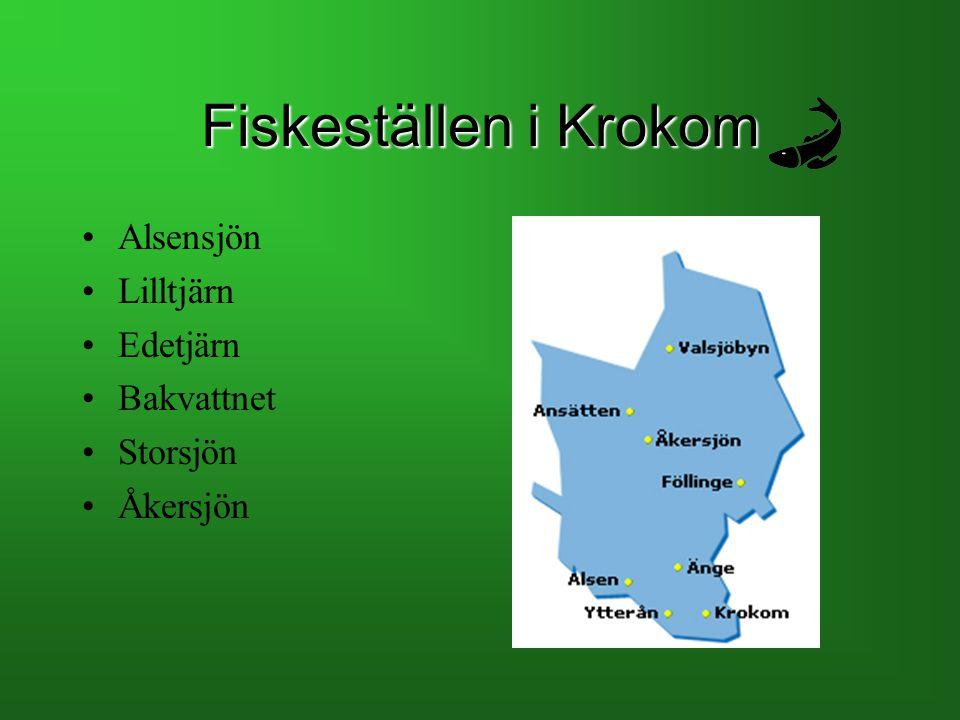 Fiskeställen i Krokom Alsensjön Lilltjärn Edetjärn Bakvattnet Storsjön