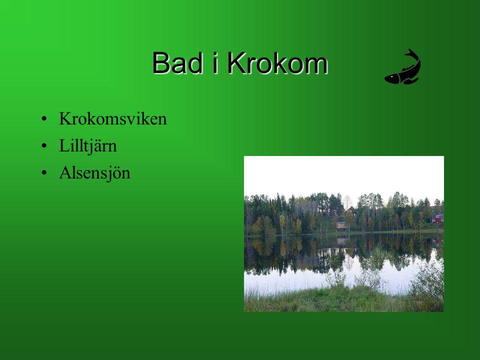 Bad i Krokom Krokomsviken Lilltjärn Alsensjön