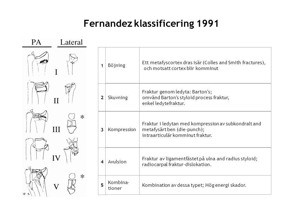 Fernandez klassificering 1991