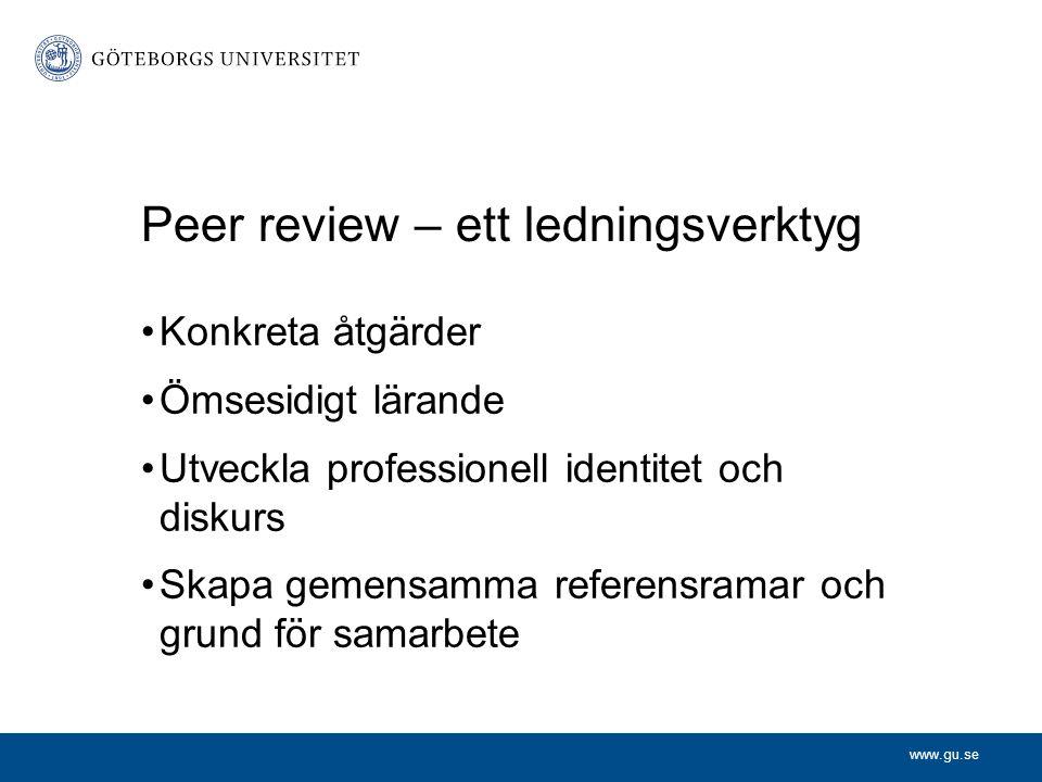 Peer review – ett ledningsverktyg