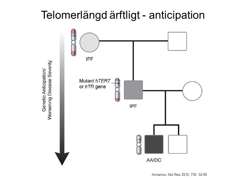 Telomerlängd ärftligt - anticipation