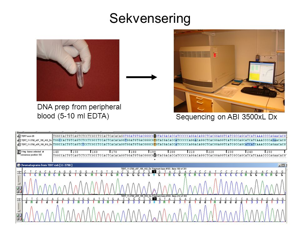 Sekvensering DNA prep from peripheral blood (5-10 ml EDTA)