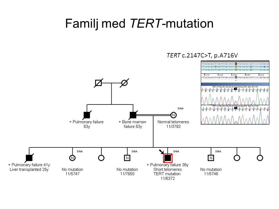 Familj med TERT-mutation