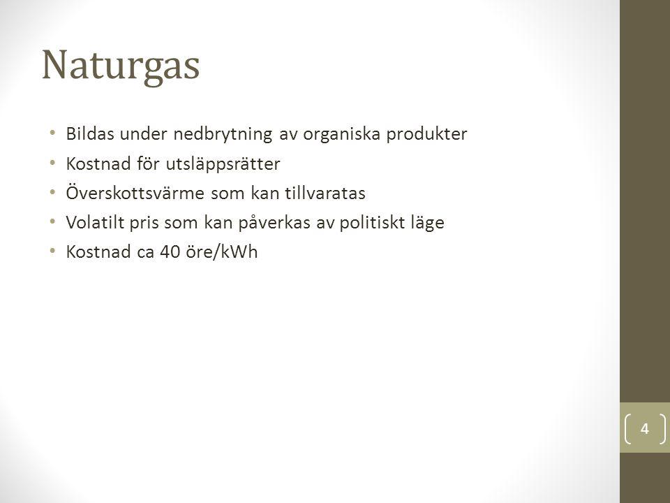 Naturgas Bildas under nedbrytning av organiska produkter