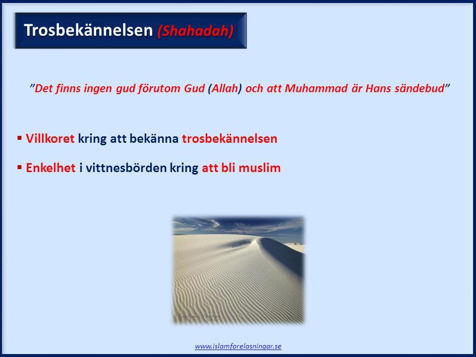 Trosbekännelsen (Shahadah)