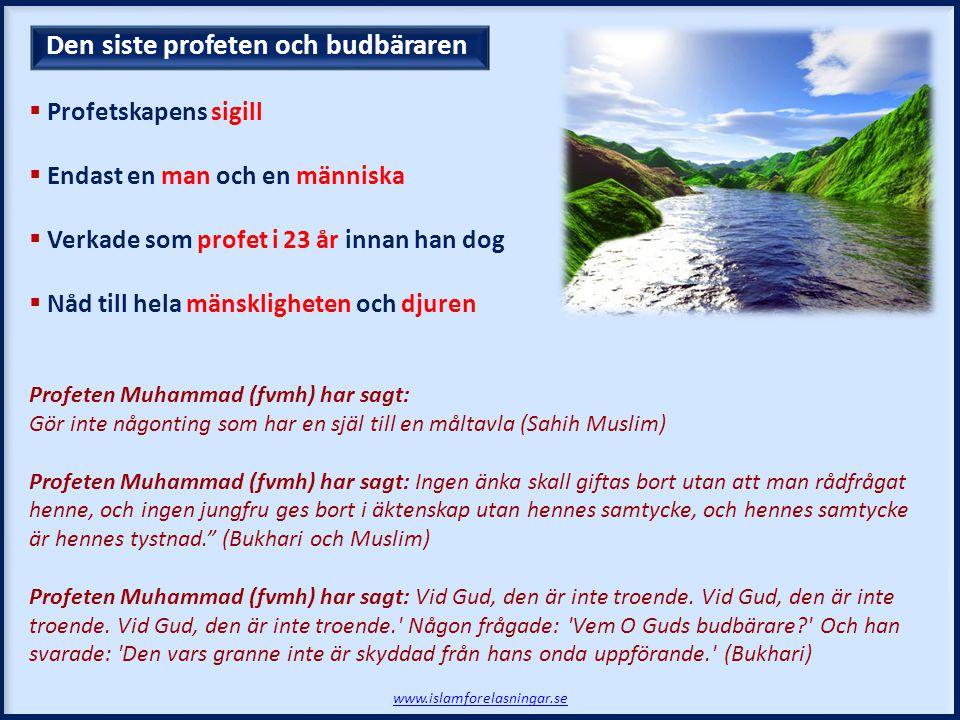 Den siste profeten och budbäraren