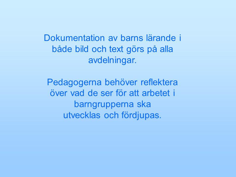 Dokumentation av barns lärande i både bild och text görs på alla avdelningar.