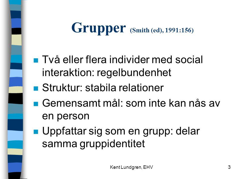 Grupper (Smith (ed), 1991:156) Två eller flera individer med social interaktion: regelbundenhet. Struktur: stabila relationer.
