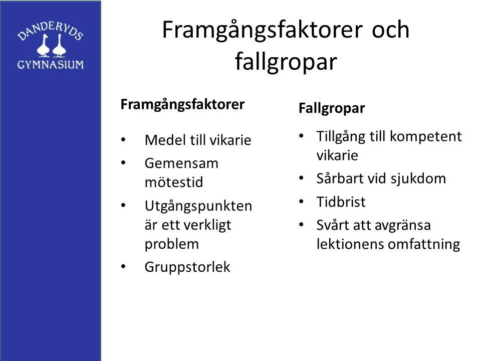 Framgångsfaktorer och fallgropar