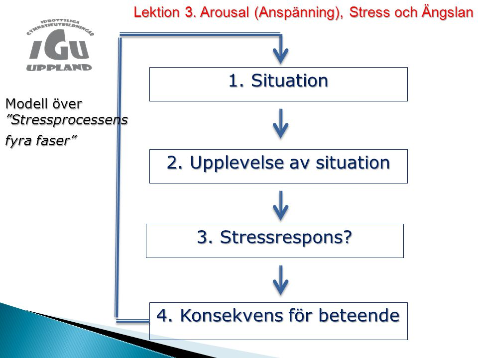 2. Upplevelse av situation