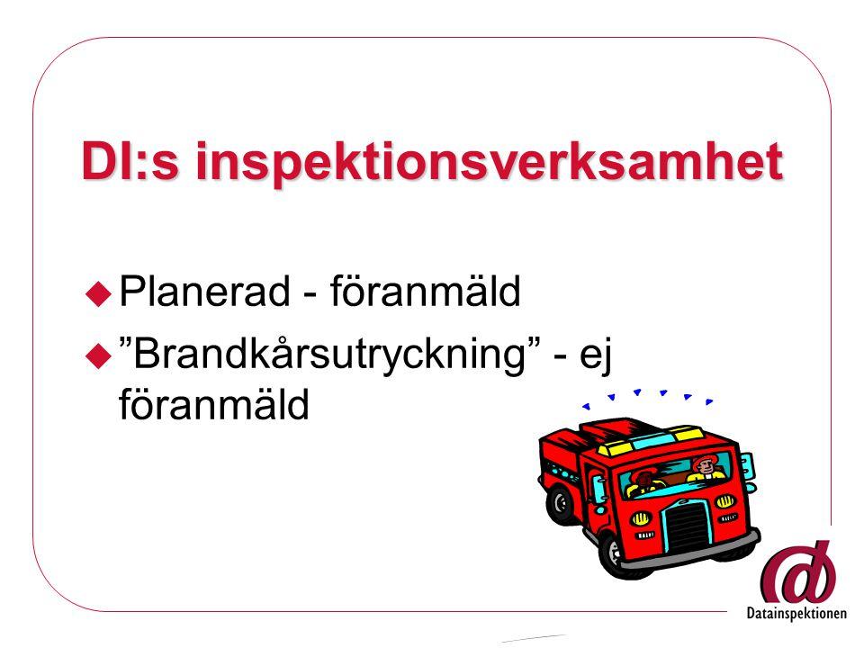 DI:s inspektionsverksamhet