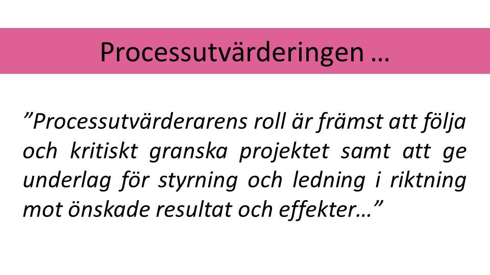Processutvärderingen …
