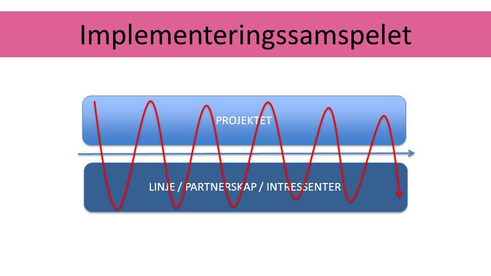 Implementeringssamspelet