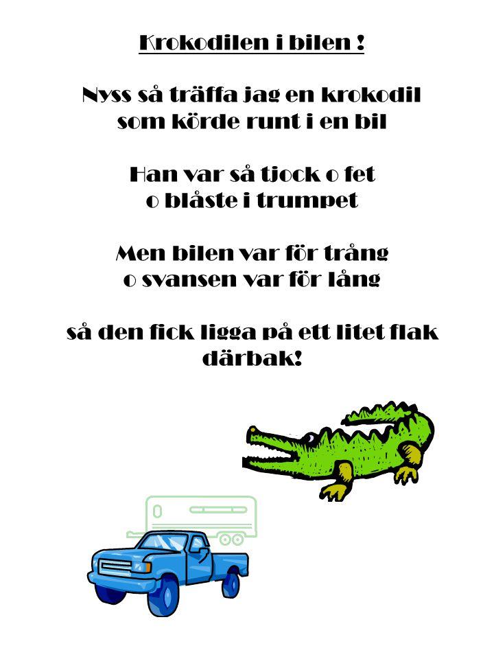 Nyss så träffa jag en krokodil som körde runt i en bil