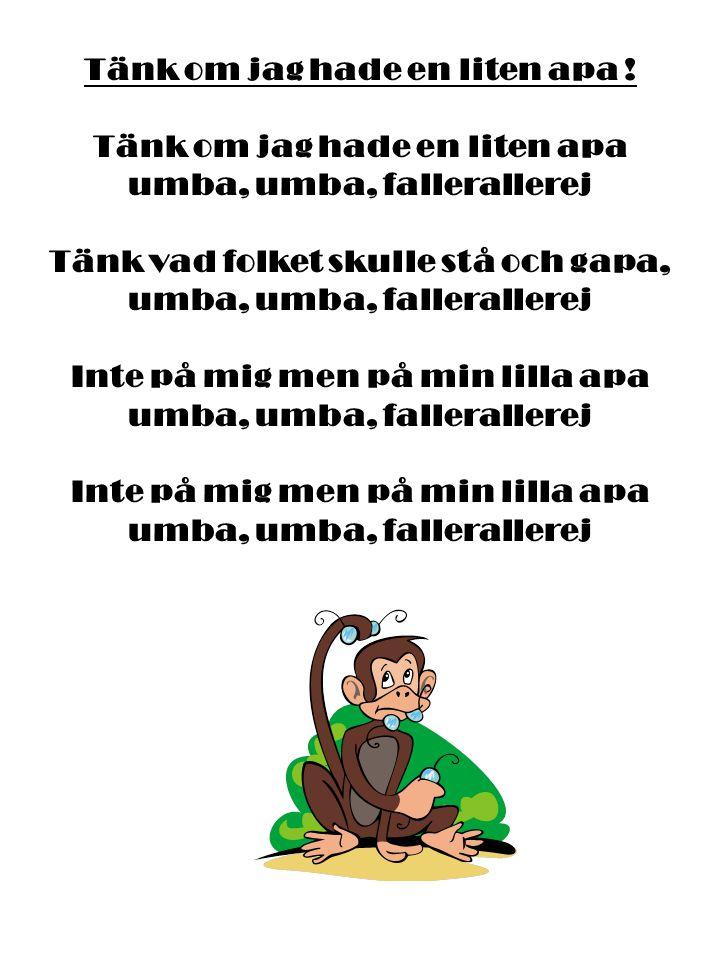 Tänk om jag hade en liten apa ! Tänk om jag hade en liten apa