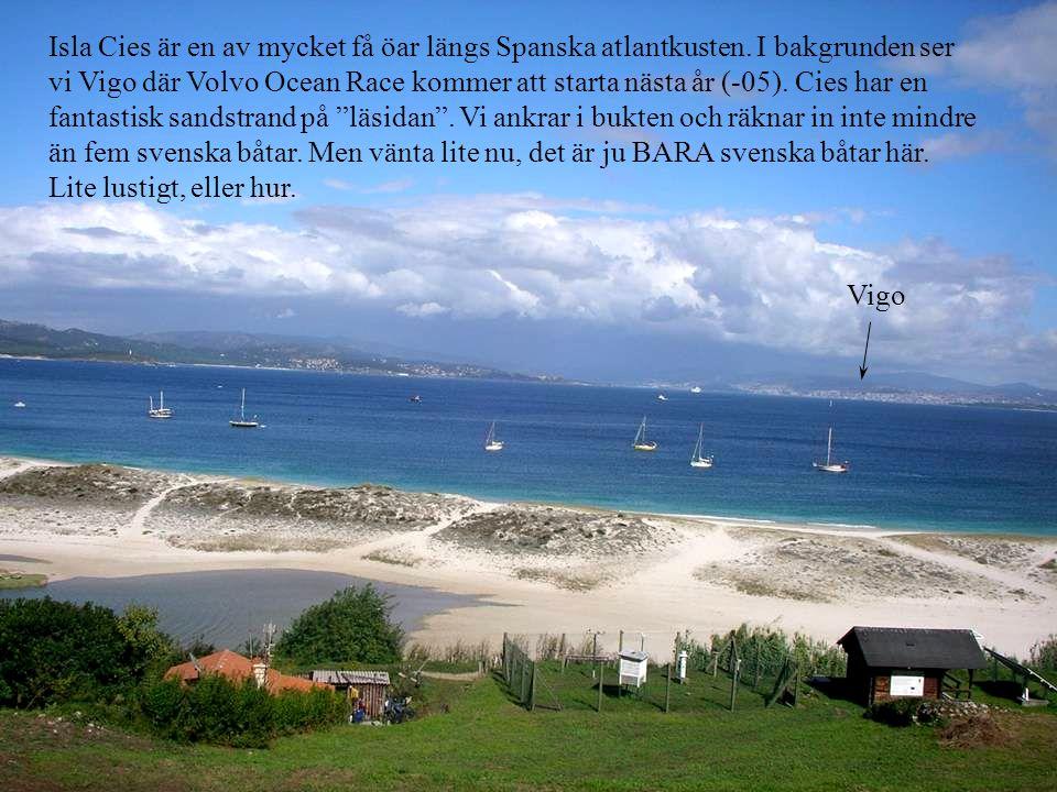 Isla Cies är en av mycket få öar längs Spanska atlantkusten