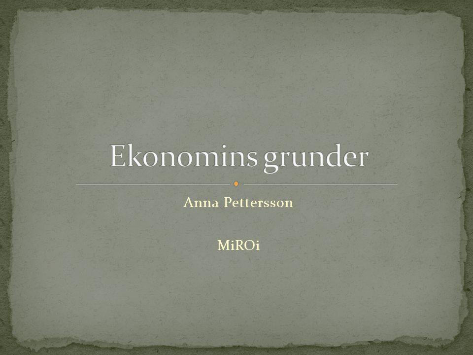 Ekonomins grunder Anna Pettersson MiROi