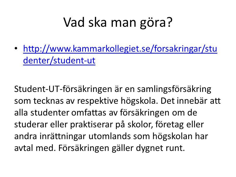 Vad ska man göra http://www.kammarkollegiet.se/forsakringar/studenter/student-ut.