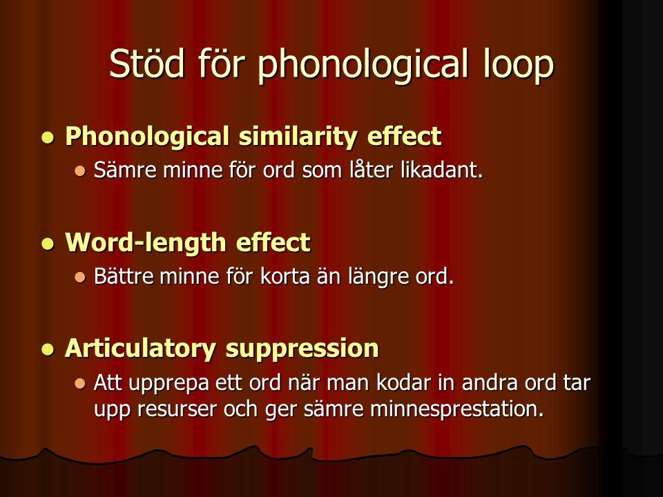 Stöd för phonological loop