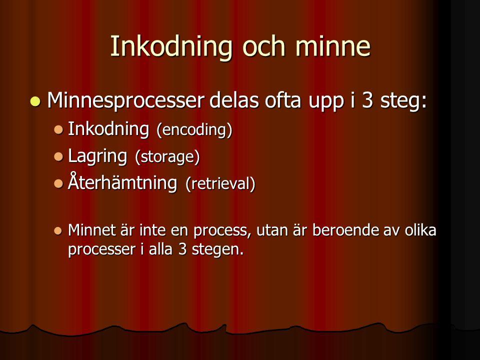 Inkodning och minne Minnesprocesser delas ofta upp i 3 steg: