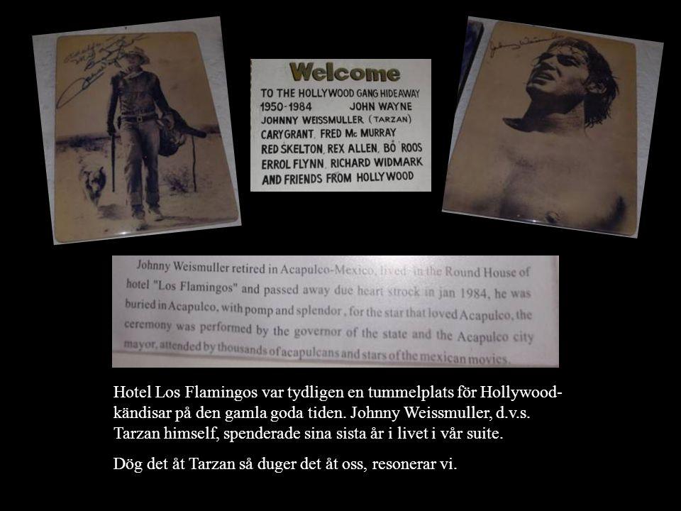 Hotel Los Flamingos var tydligen en tummelplats för Hollywood-kändisar på den gamla goda tiden. Johnny Weissmuller, d.v.s. Tarzan himself, spenderade sina sista år i livet i vår suite.