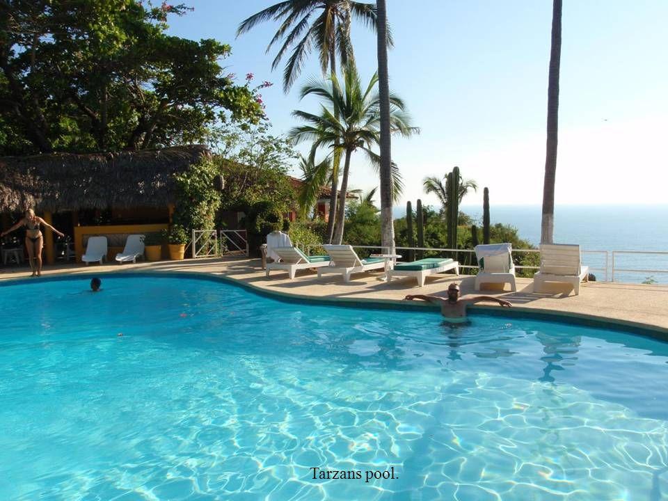 Tarzans pool.