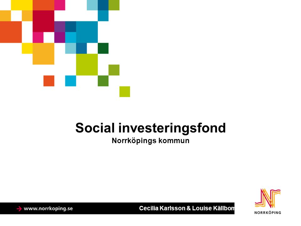 Social investeringsfond Norrköpings kommun