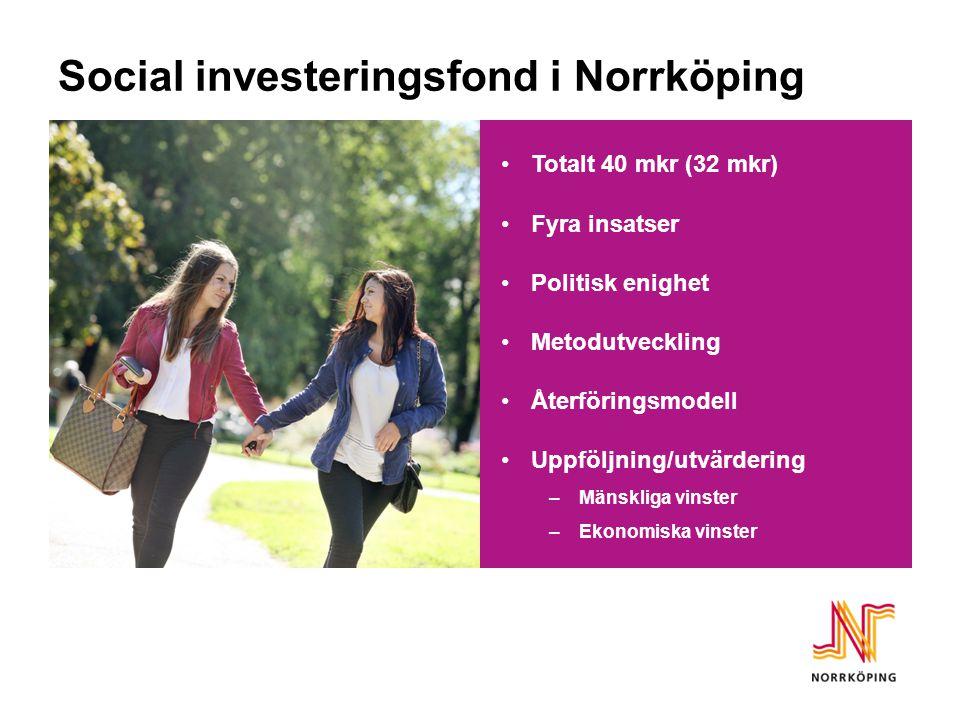 Social investeringsfond i Norrköping