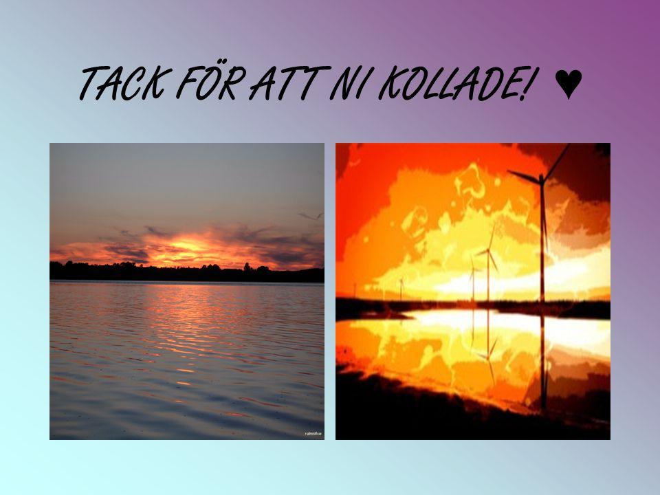 TACK FÖR ATT NI KOLLADE! ♥