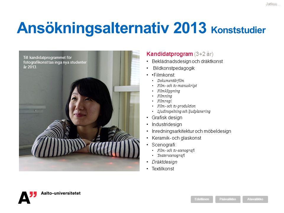 Ansökningsalternativ 2013 Konststudier