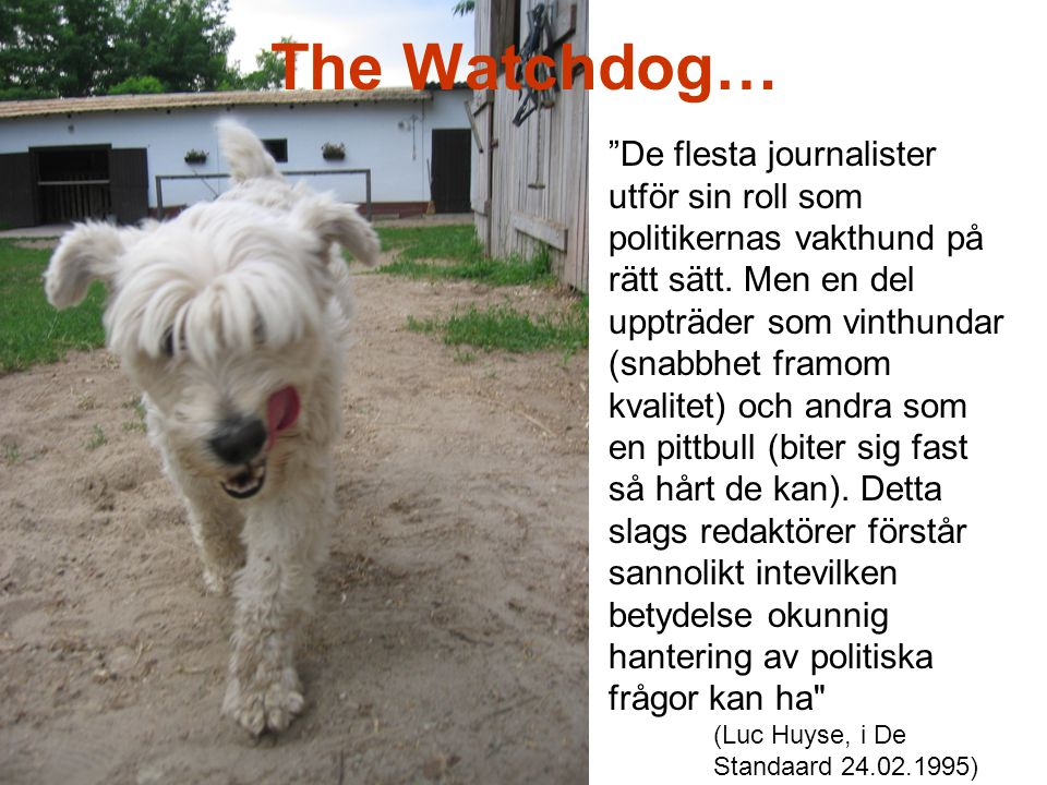 The Watchdog…