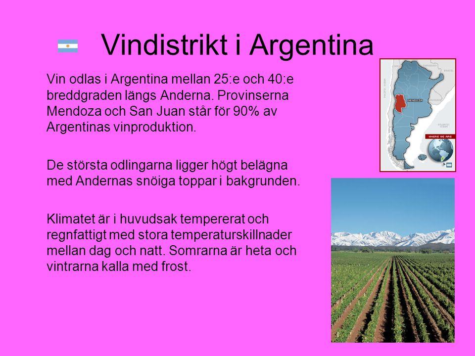 Vindistrikt i Argentina