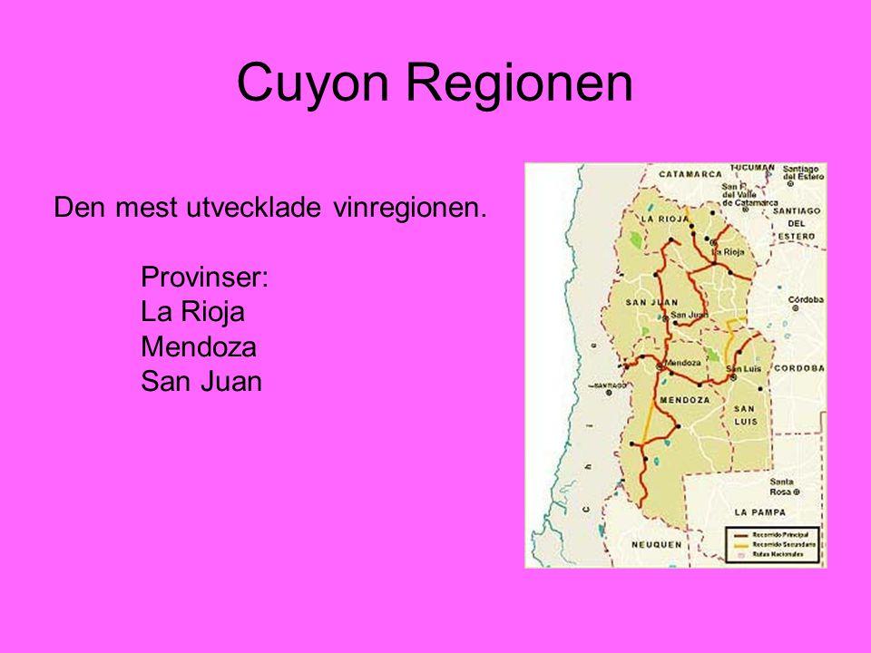 Cuyon Regionen Den mest utvecklade vinregionen. Provinser: La Rioja