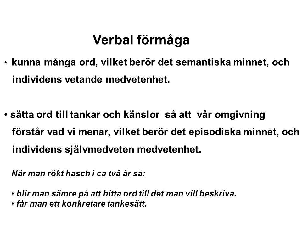 Verbal förmåga individens vetande medvetenhet.