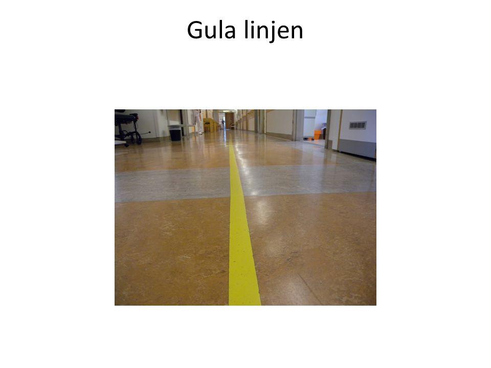 Gula linjen