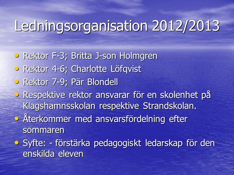 Ledningsorganisation 2012/2013