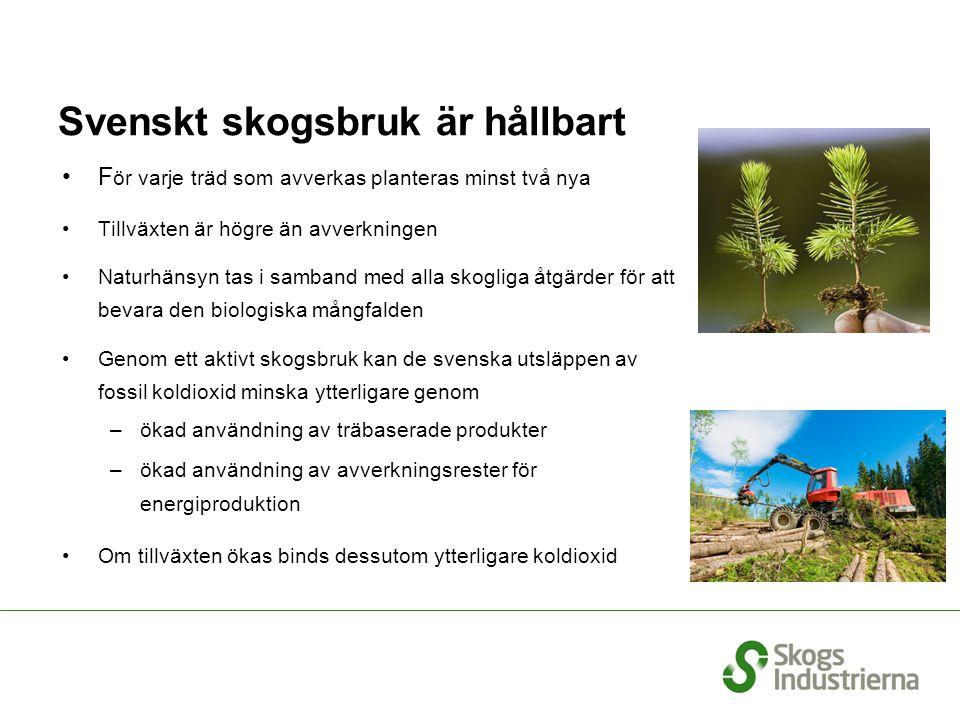 Svenskt skogsbruk är hållbart