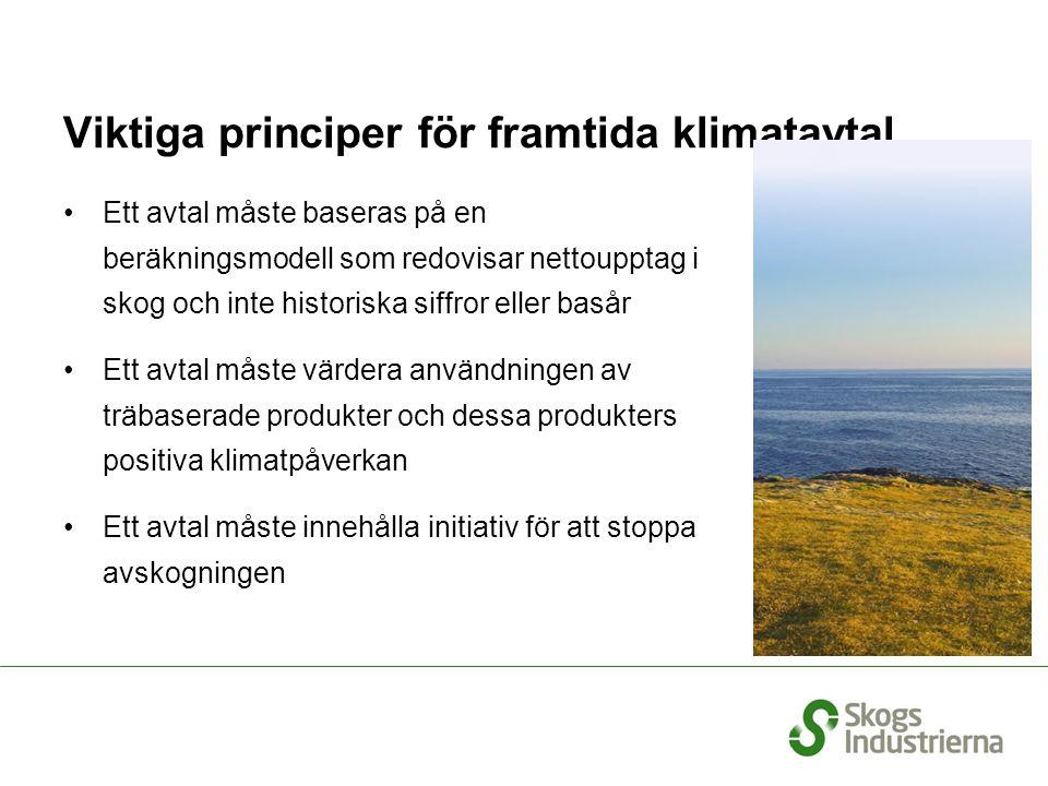 Viktiga principer för framtida klimatavtal