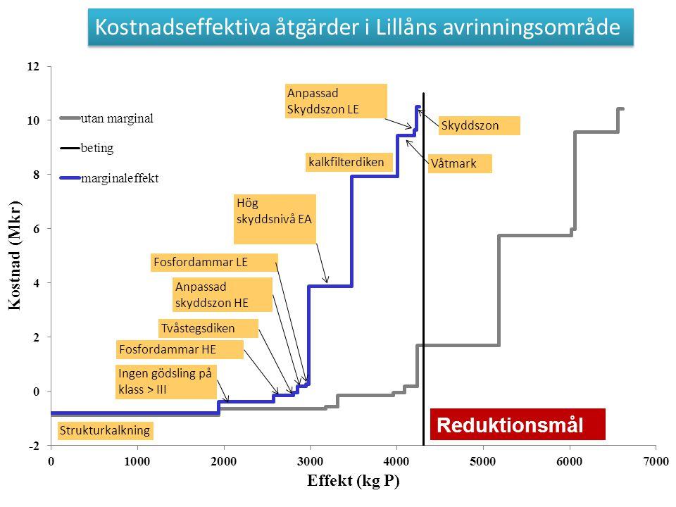 Kostnadseffektiva åtgärder i Lillåns avrinningsområde