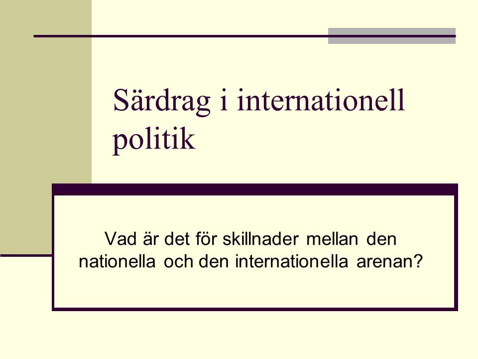Särdrag i internationell politik
