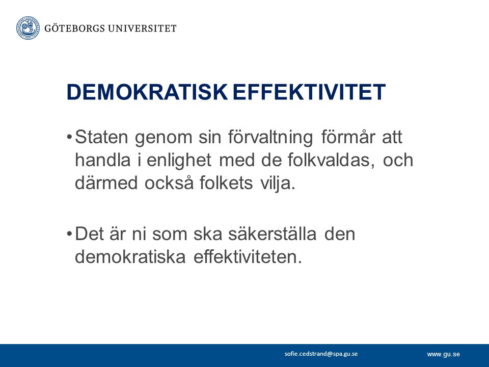 DEMOKRATISK EFFEKTIVITET