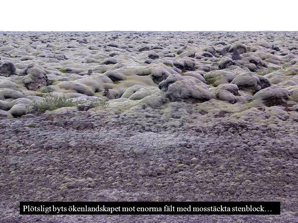 Plötsligt byts ökenlandskapet mot enorma fält med mosstäckta stenblock…