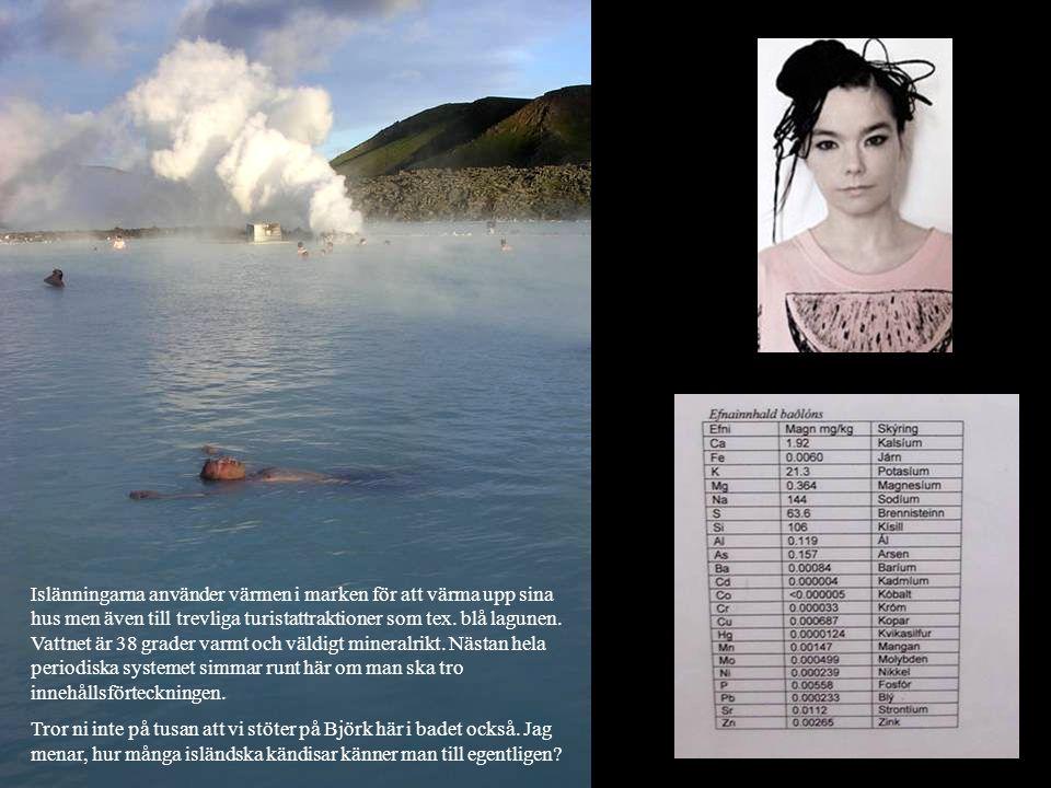 Islänningarna använder värmen i marken för att värma upp sina hus men även till trevliga turistattraktioner som tex. blå lagunen. Vattnet är 38 grader varmt och väldigt mineralrikt. Nästan hela periodiska systemet simmar runt här om man ska tro innehållsförteckningen.