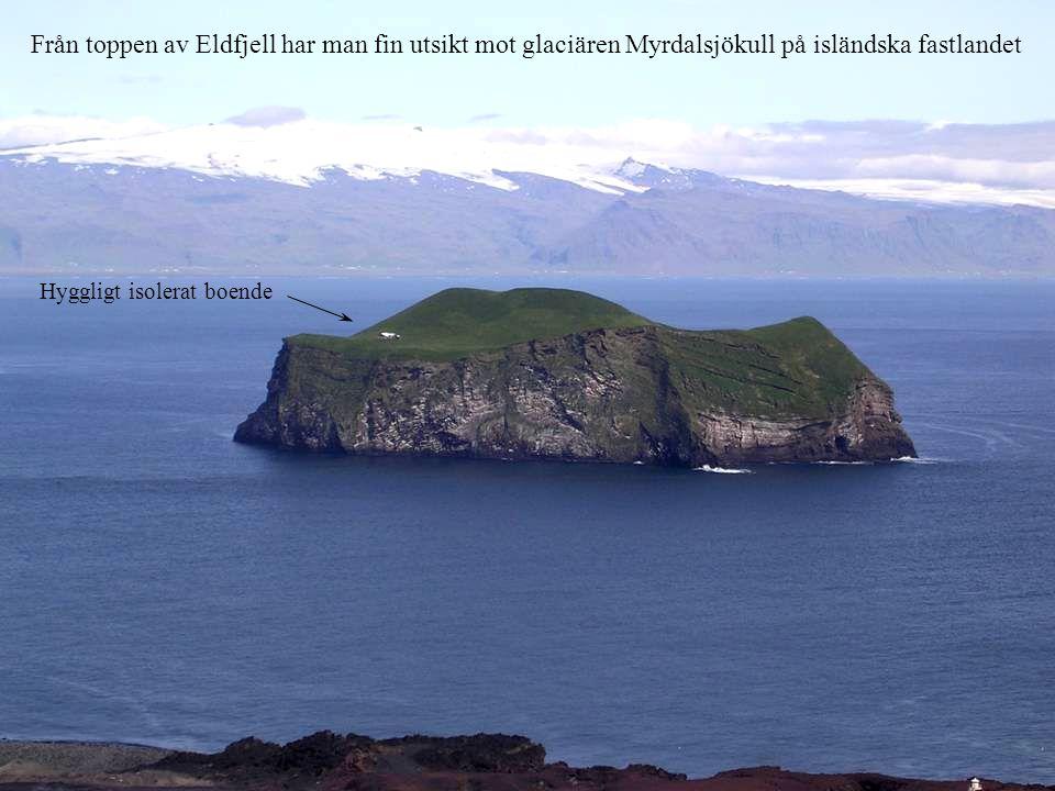 Från toppen av Eldfjell har man fin utsikt mot glaciären Myrdalsjökull på isländska fastlandet